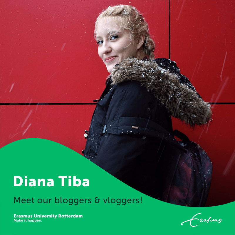Introduction image - Diana Tiba
