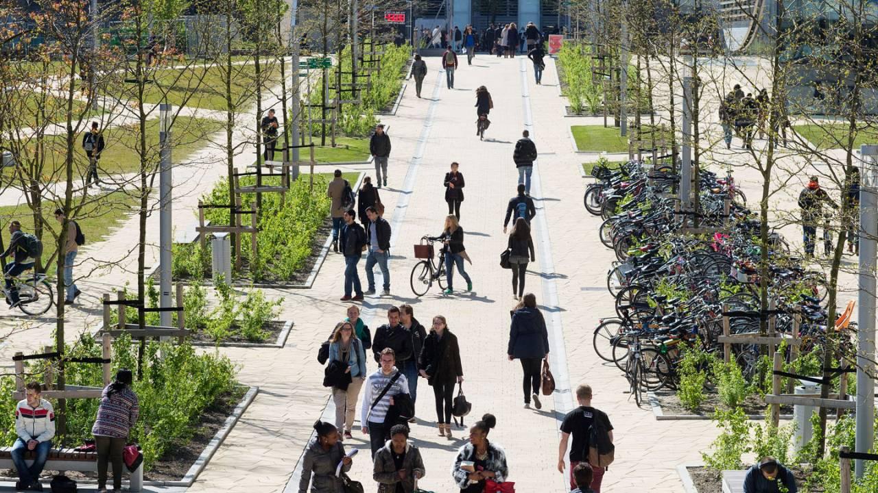 Erasmus University Rotterdam Erasmus University Rotterdam